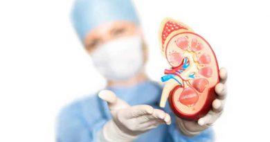 Remedy on Kidney Stone
